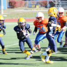 The Panthers ran the ball hard against the JJK Jr. Flyers in the Superbowl game on Saturday, November 19. While they would ultimately lose 20-12, the Panthers had a very successful season and are looking to build on that success next year.  (O'Fallon Weekly Photo by Nick Miller)