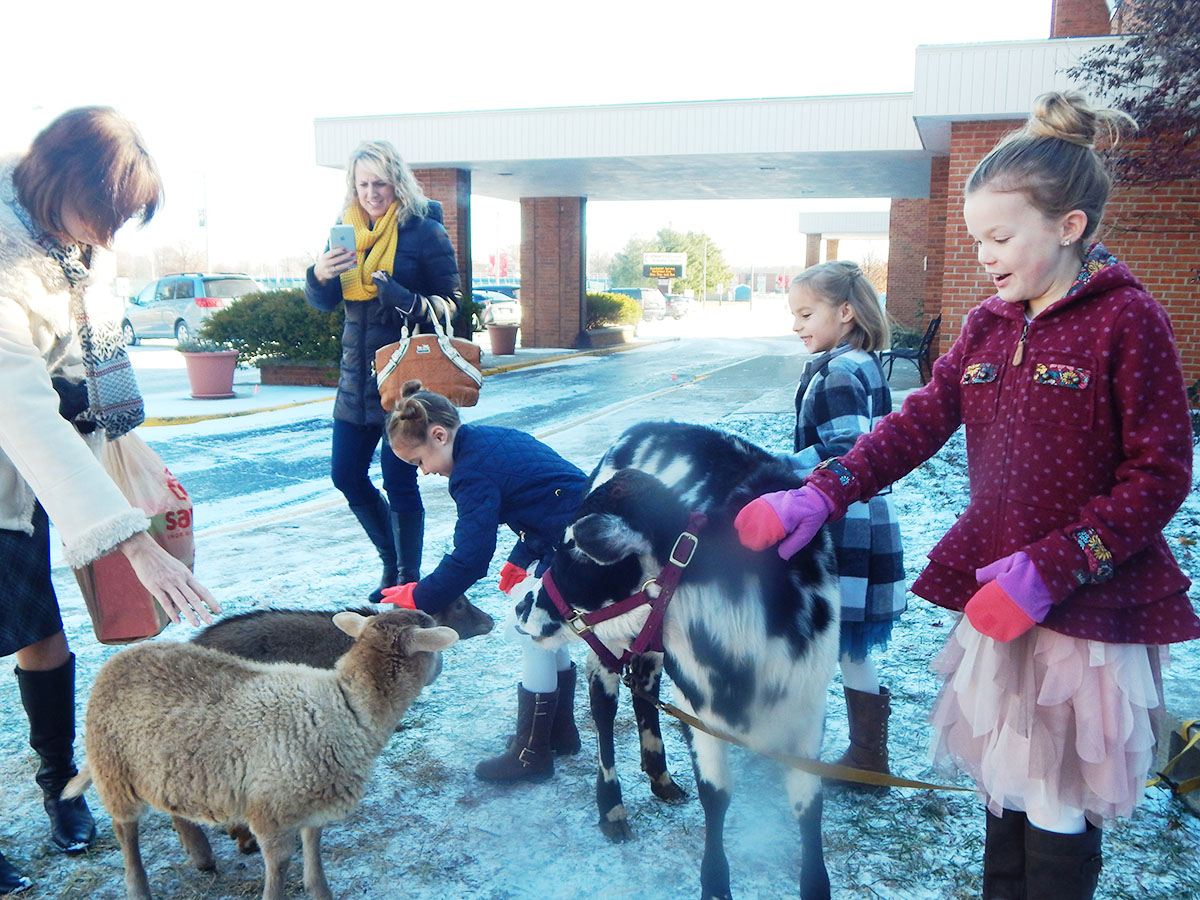 Children of the church coming together to pet the animals.